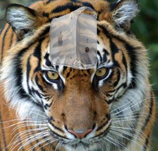 Den gamla Macen funkar fint med Tiger! :)