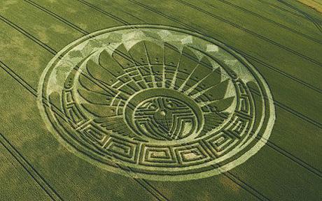 En sädescirkel med Maya-tema vid Silbury Hill, Wiltshire  (Foto: MYNEWSAGENCY)