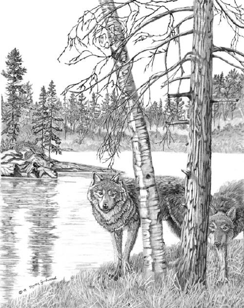 Hur många dolda djur kan du upptäcka i den här fixeringsbilden..?