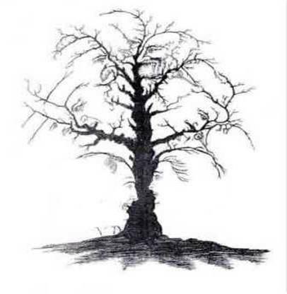 Förbluffande många ansikten i det där trädet, eller hur....?