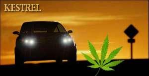 hampa, cannabis, el-bil, Kanada, Kestrel